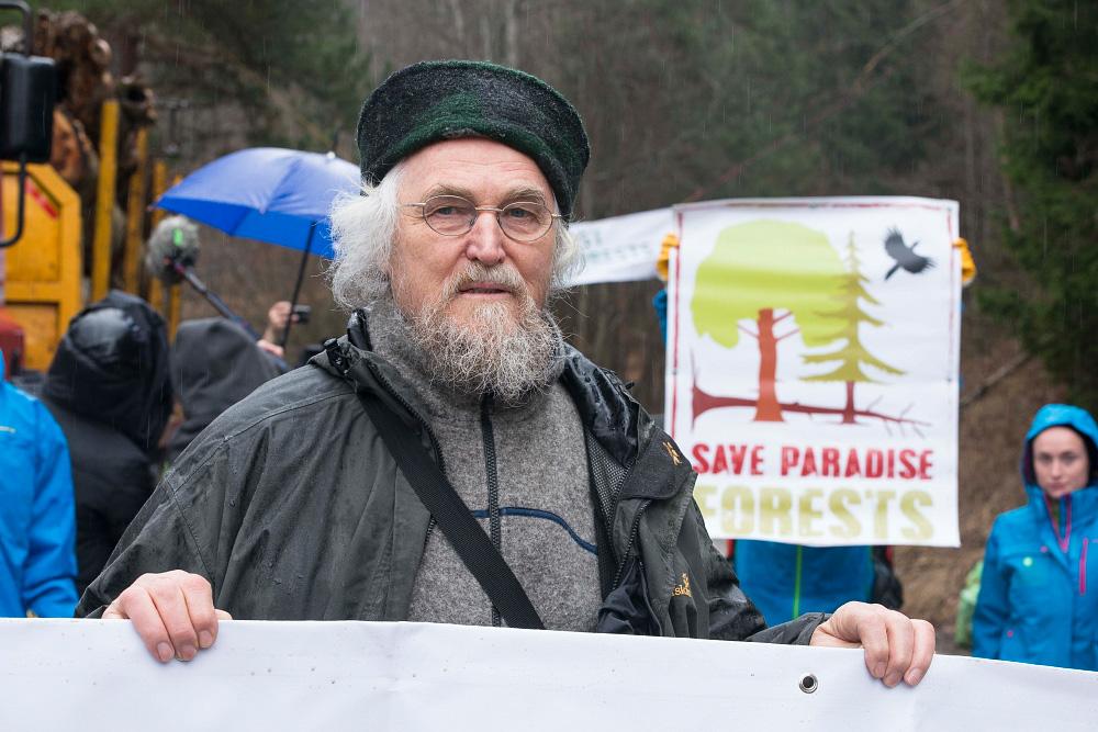 Urwald-Alarm: Aktivisten, Wissenschaftler und Bergsteiger stoppen Holz-Truck