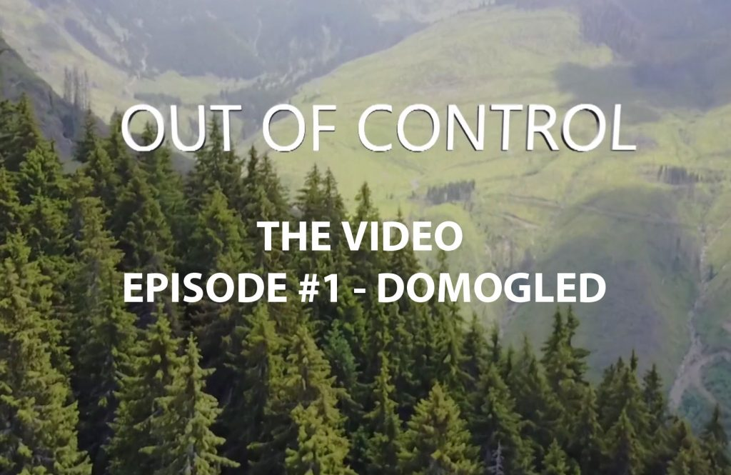 Investigation Video: Primeval Forest Destruction in Romania's National Parks