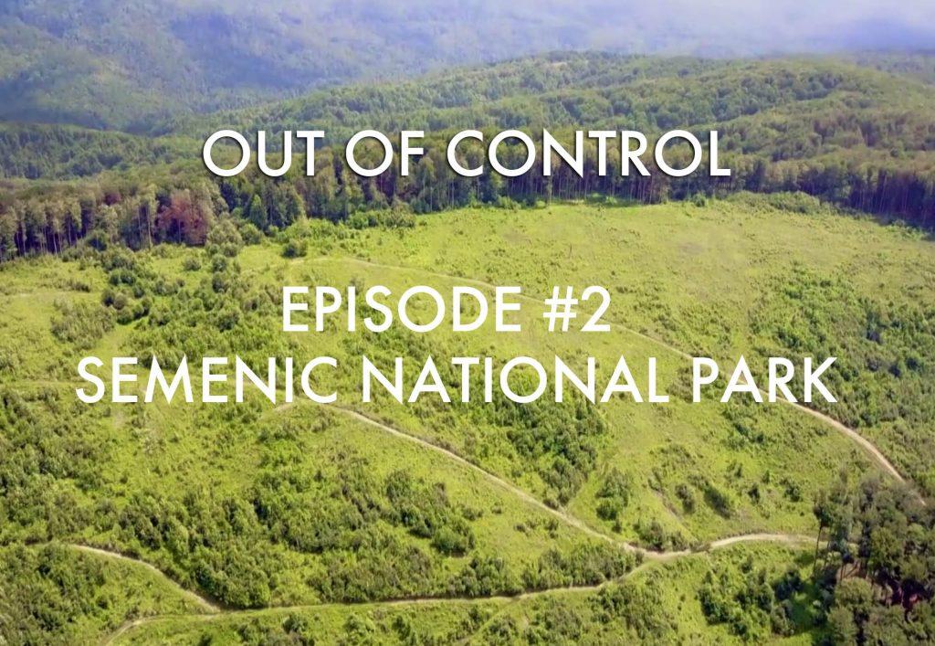 Urwaldzerstörung in Rumänien: auch Teile des Semenic-Nationalparks durch Abholzung verwüstet