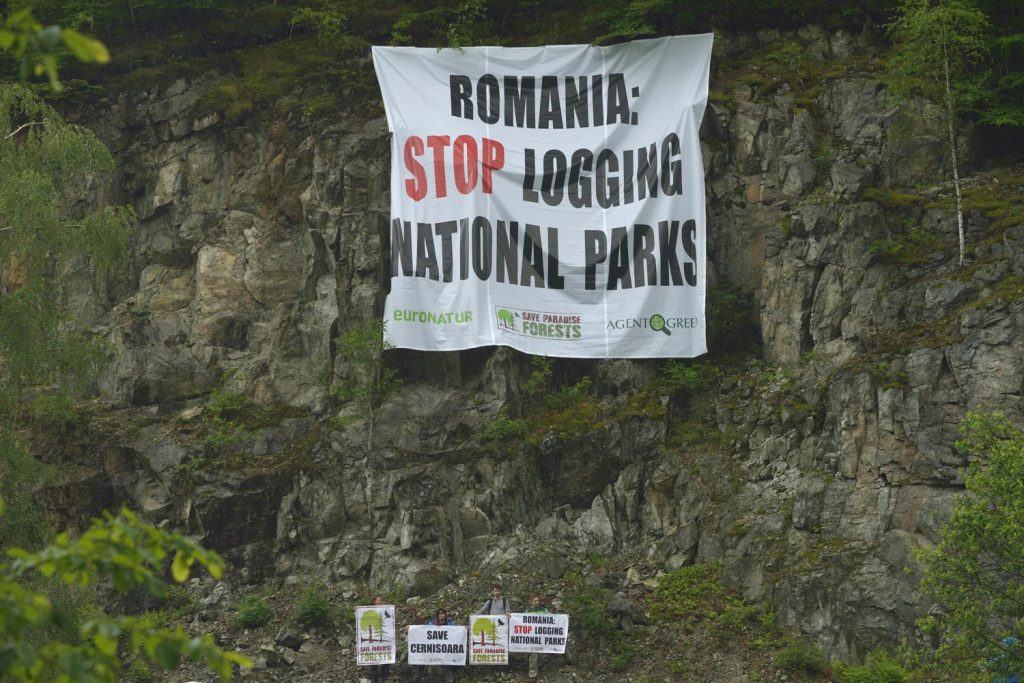 Protest action: Romania, stop logging national parks!