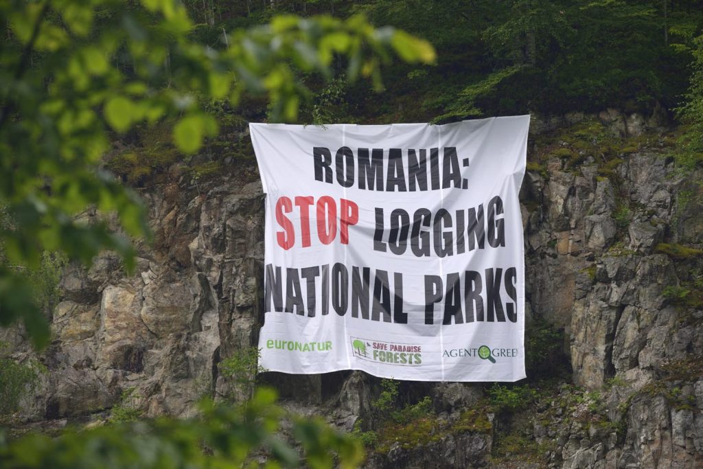 Romania: How Log Yards Hide the Destruction of Europe's Ancient Forests
