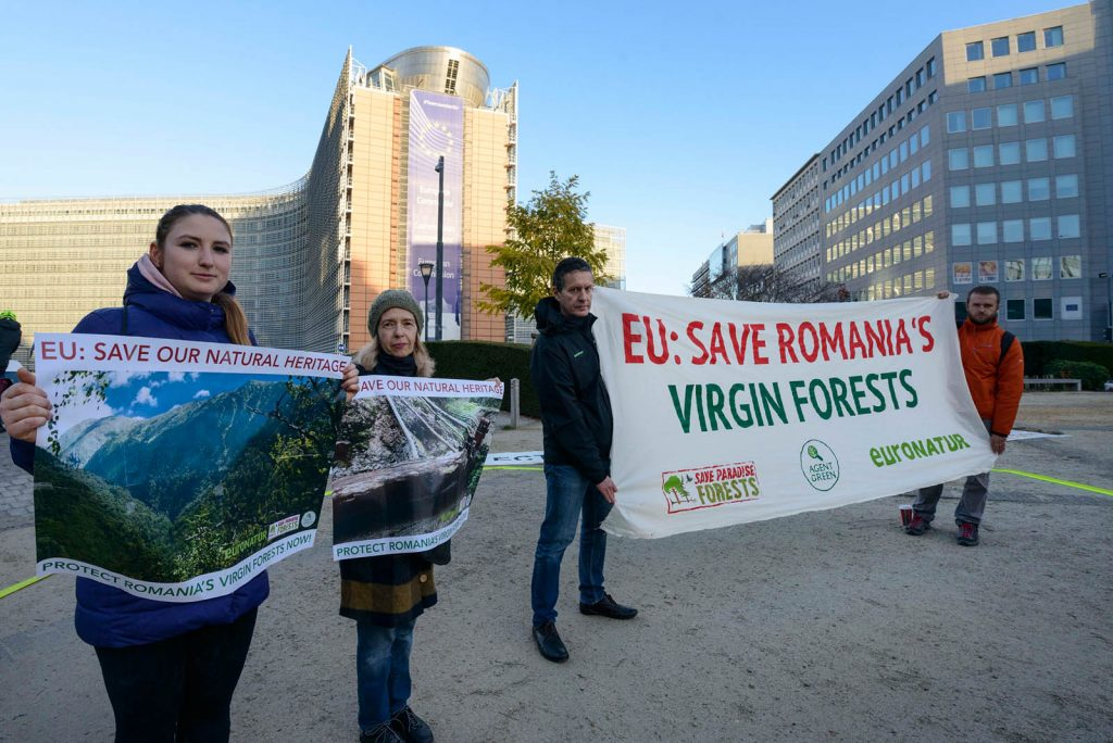 Romanian EU Presidency 2019: Eyes on Romania – and the virgin forest destruction