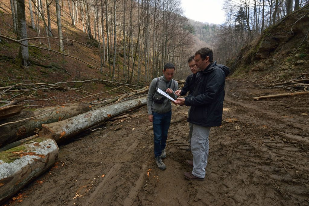 Report: Joint IUCN – EuroNatur field mission to Romanian national parks and UNESCO sites