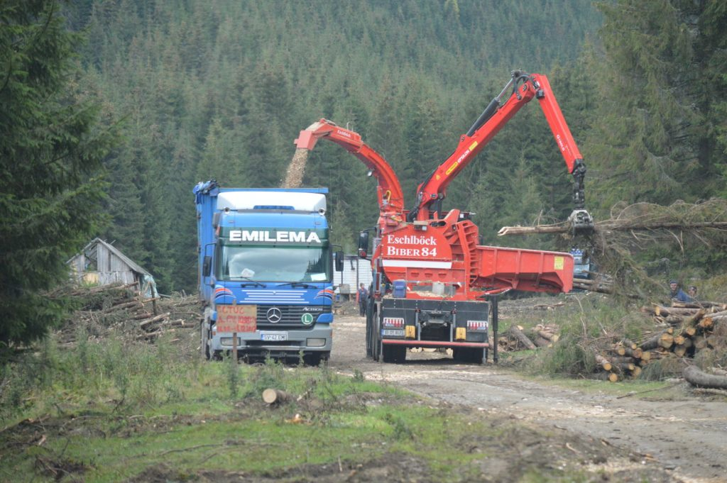 "Romania: How ""woodchippers"" threaten natural forests and help with laundering of illegal logging"