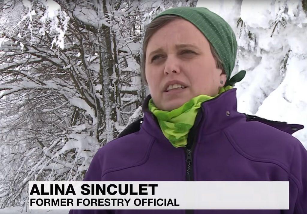 Rumänien: Biologin des Semenic National Park kündigt aus Protest gegen illegale Abholzungen