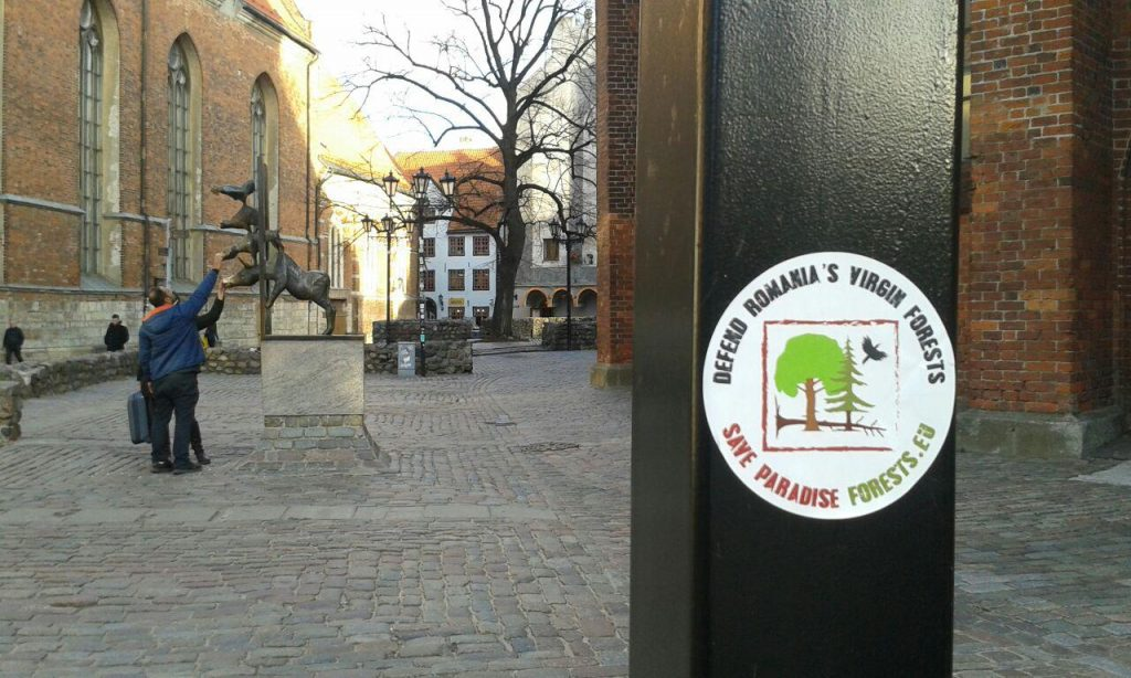 100 stickers in 100 cities – standing tall for Romania's virgin forests