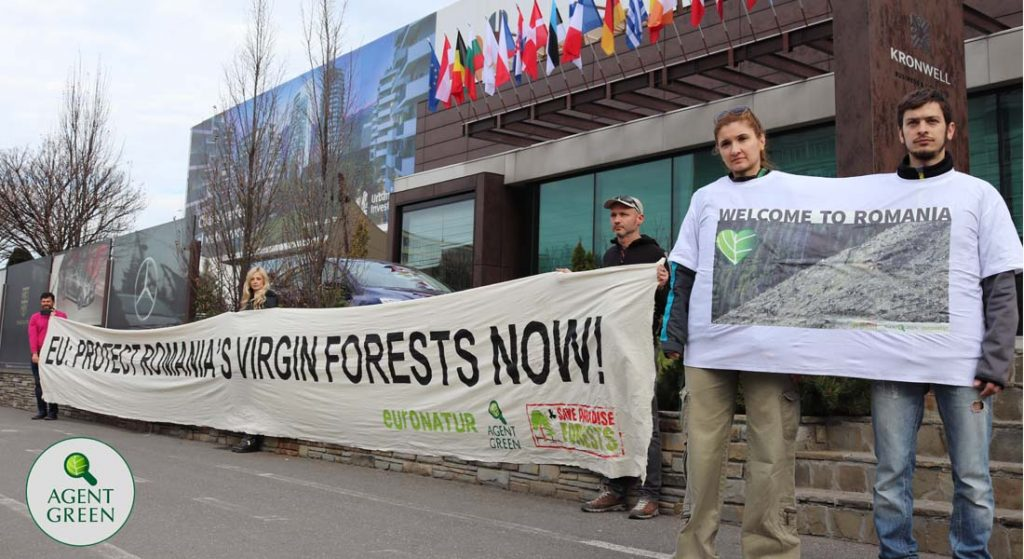 NGOs challenge the Romanian Government at Aarhus Convention and EU Commission over forest logging disaster