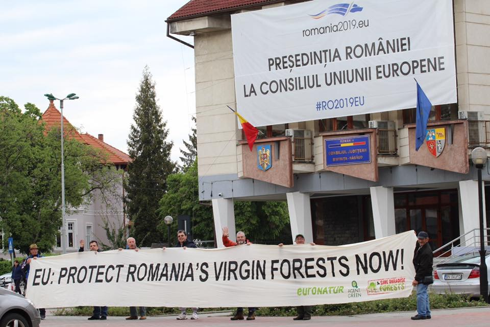 Call on EU Summit in Sibiu: Fight ecosystem crisis, save Romania's forest treasure