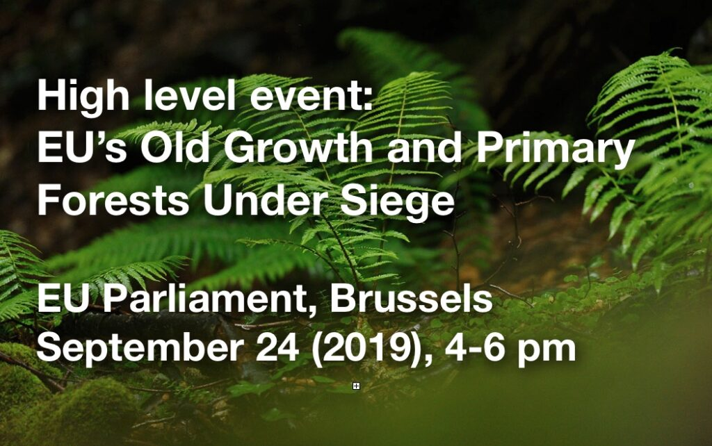 High level event in EU Parliament: EU's Old Growth and Primary Forests Under Siege