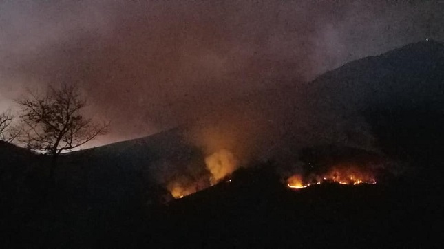 Forest fires destroy Romania's Domogled National Park and threaten nature and people