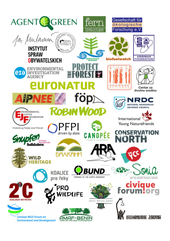 International NGOs condemn the assassination of Romanian foresters and call for action against illegal logging