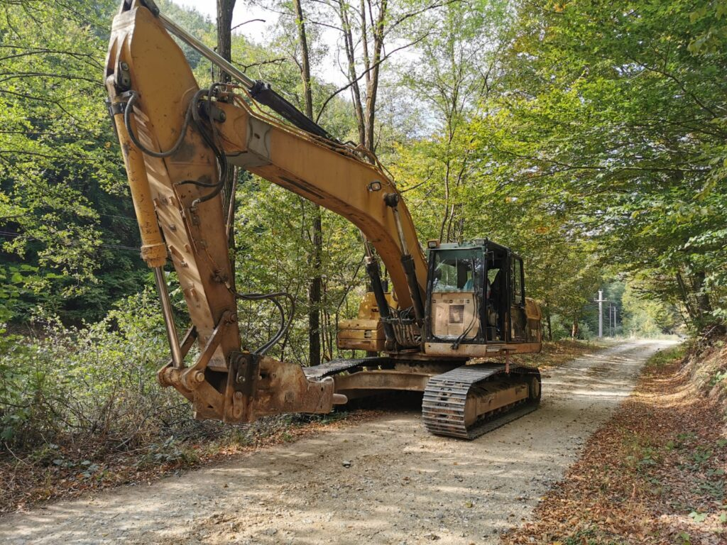 Romania: Complaint by Agent Green stops the destruction of natural forest on Mehedinti Plateau