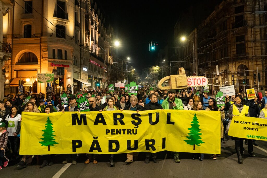 We need action now! Romanian citizens joined forces in the street to protest for better protection of Europe's last primary and old-growth forests