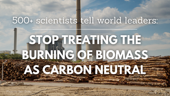 500+ scientists tell world leaders: Stop treating burning of biomass as carbon neutral